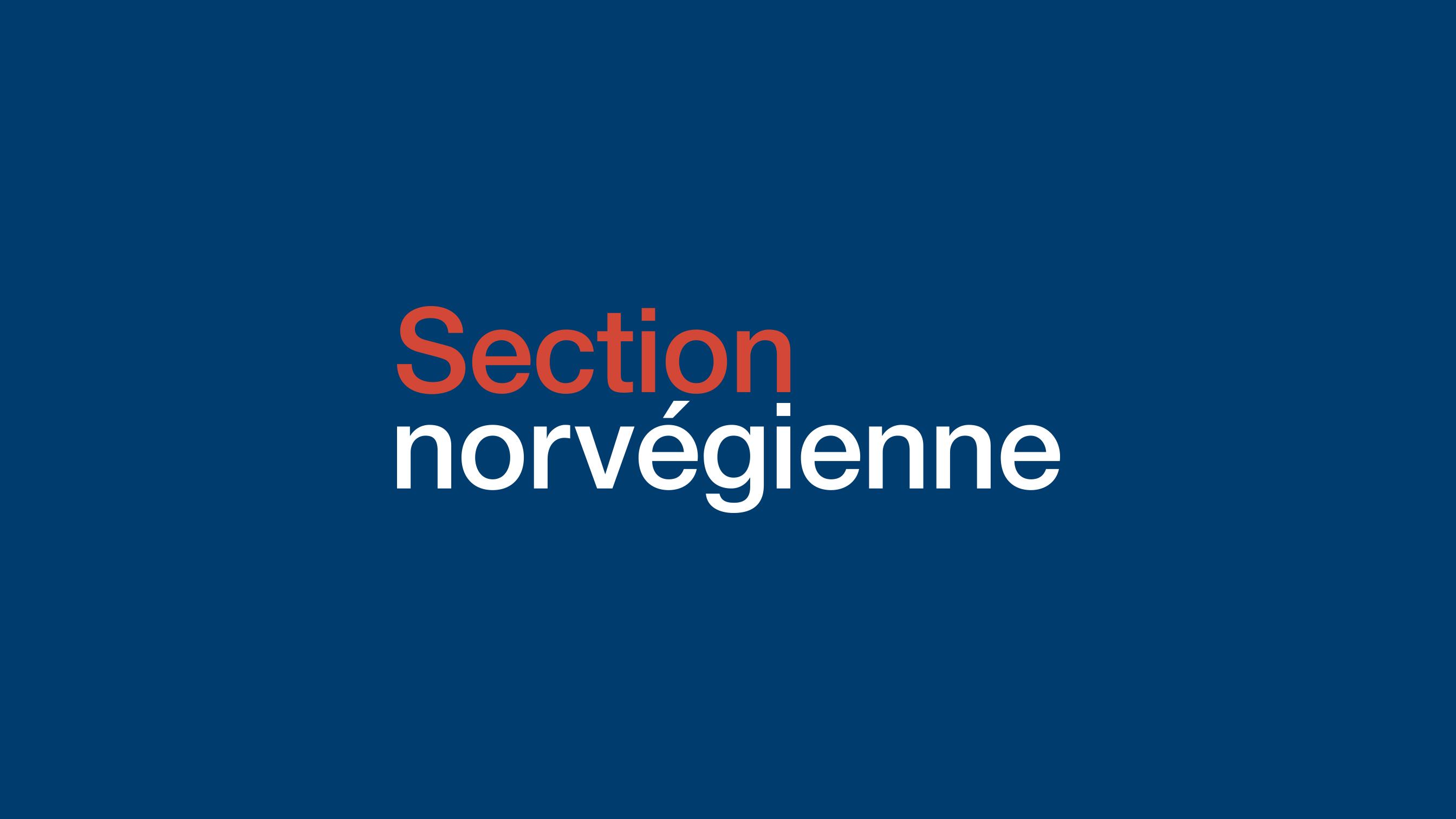section-norvegienne-logotype-pikteo